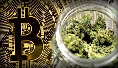 How Cryptocurrency And CBD Industries Go Hand In Hand